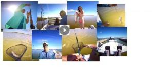 BRADS COLLAGE FISHING